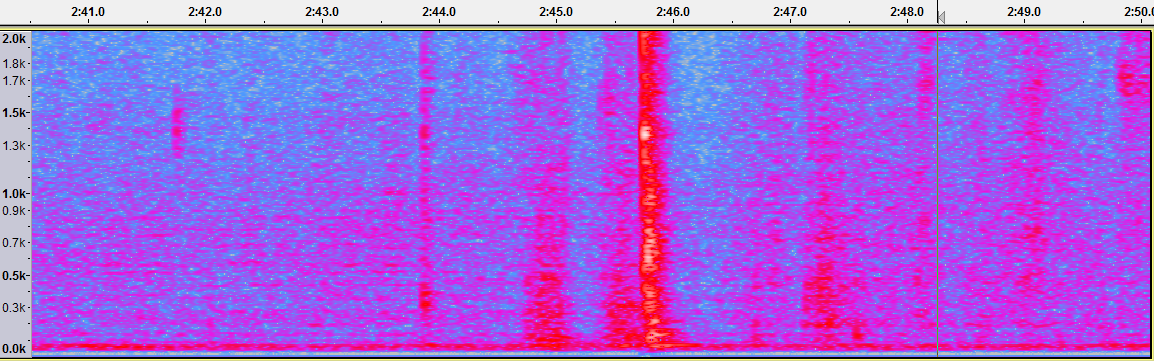 Noise spectrogram.png