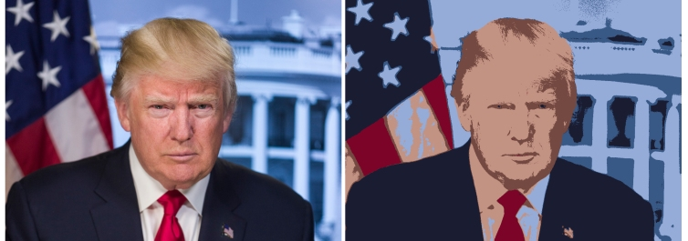 Donald reduced to 6 colours.jpg